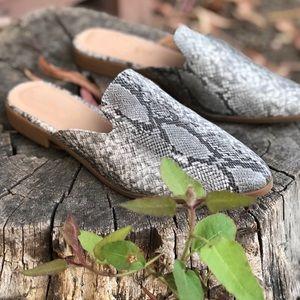 Shoes - Vegan Snake Animal print slip on Mules